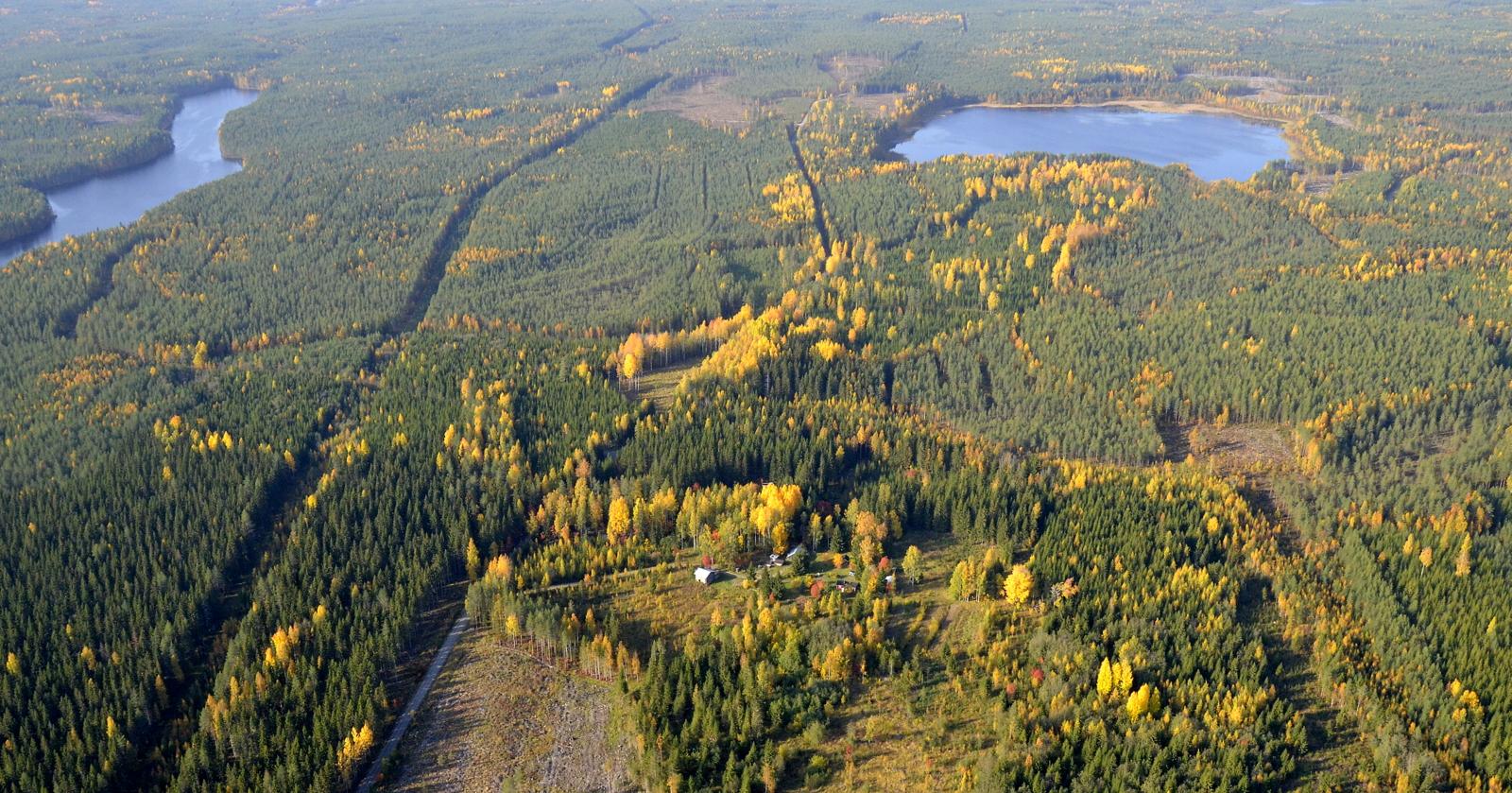 Kuvassa oikealla Murojärvi.