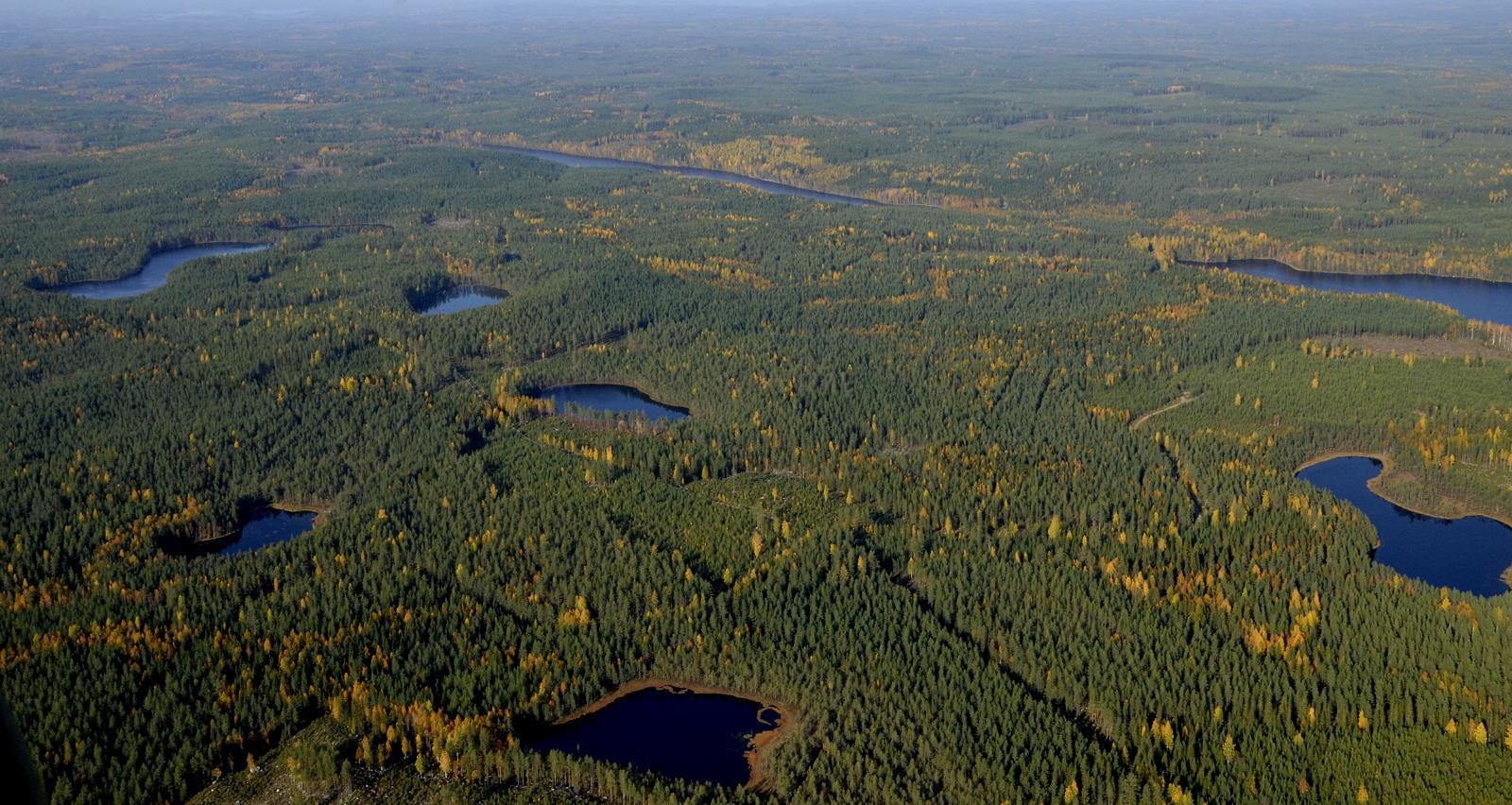 Lisää pieniä lampia, osa nimettömiä. Vasemmalla ylhäällä Salmijärvi, oikealla ylhäällä Keskimmäinen Vuorijärvi.