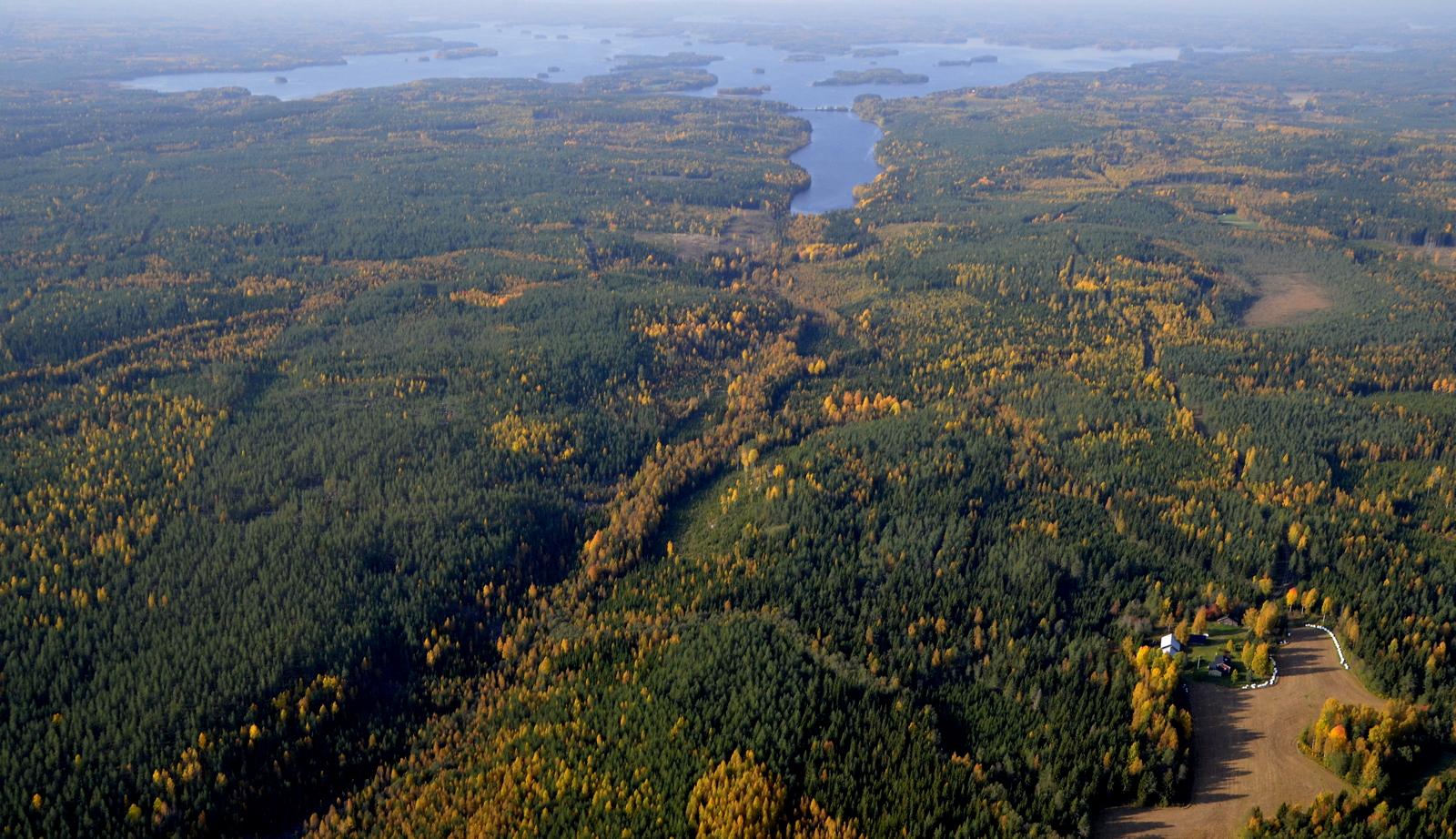 Nyt lennän Viitasaaren puolella. Maatila peltoineen on Valkeapuro. Taustalla Vuorilahti.