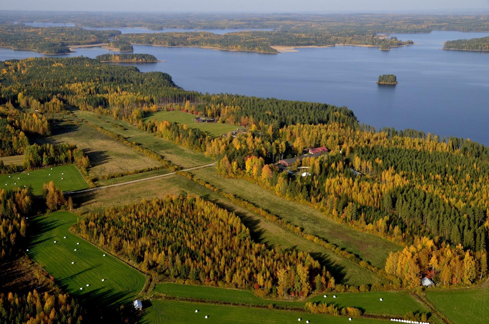 Vuosjärven Hintonselän rantamia. Selän vasemmassa laidassa Hilmonlahti.