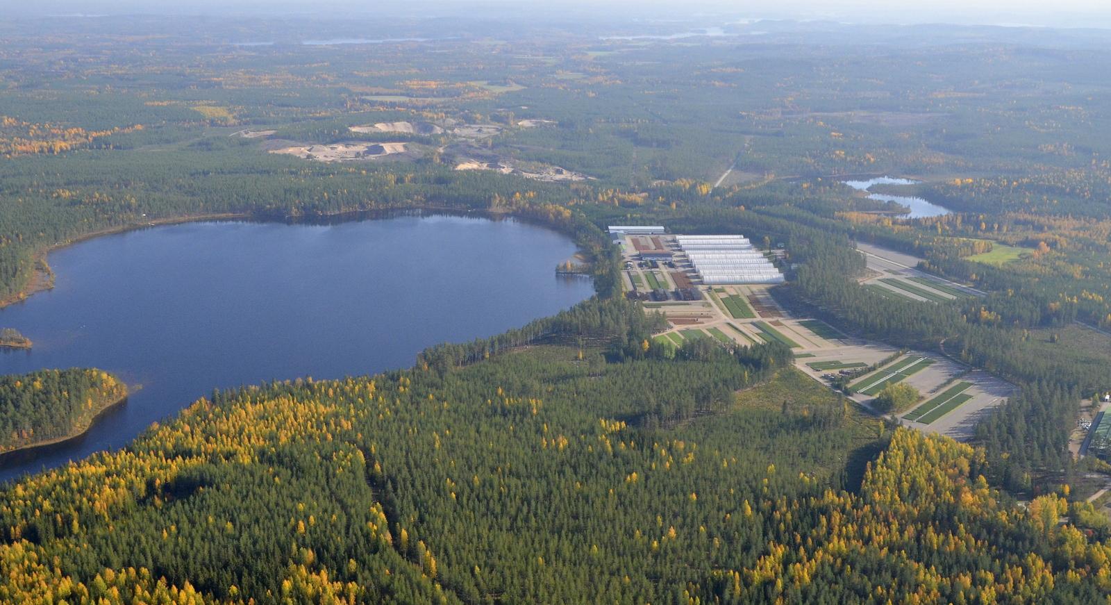 Kangasjärvi ja Pataman taimitarha. Taustalla näkyy Pyyrinlahtea.