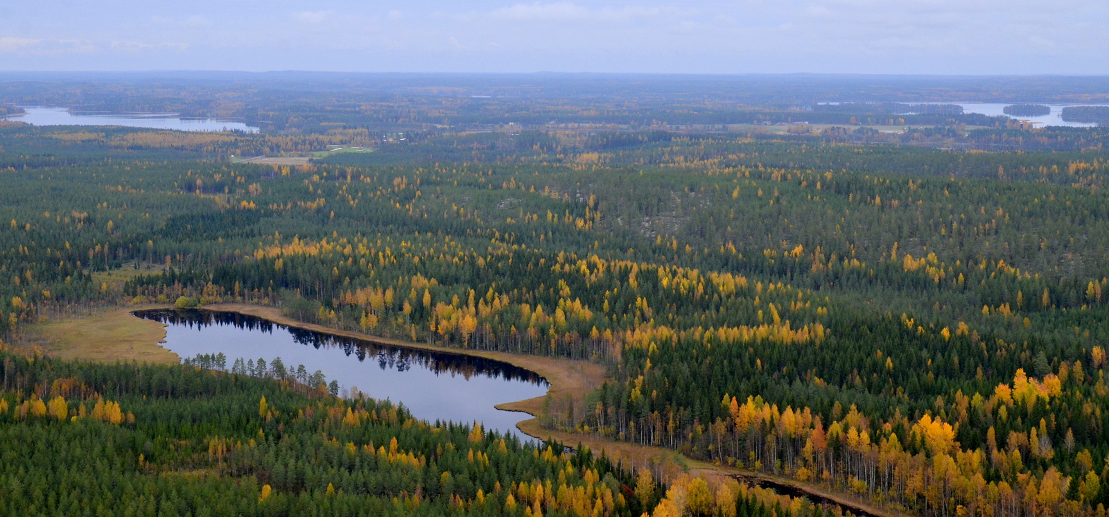 Rauskajärvet ja saman niminen luonnonsuojelualue heti järvien takana. Taustalla kolimajärveä.