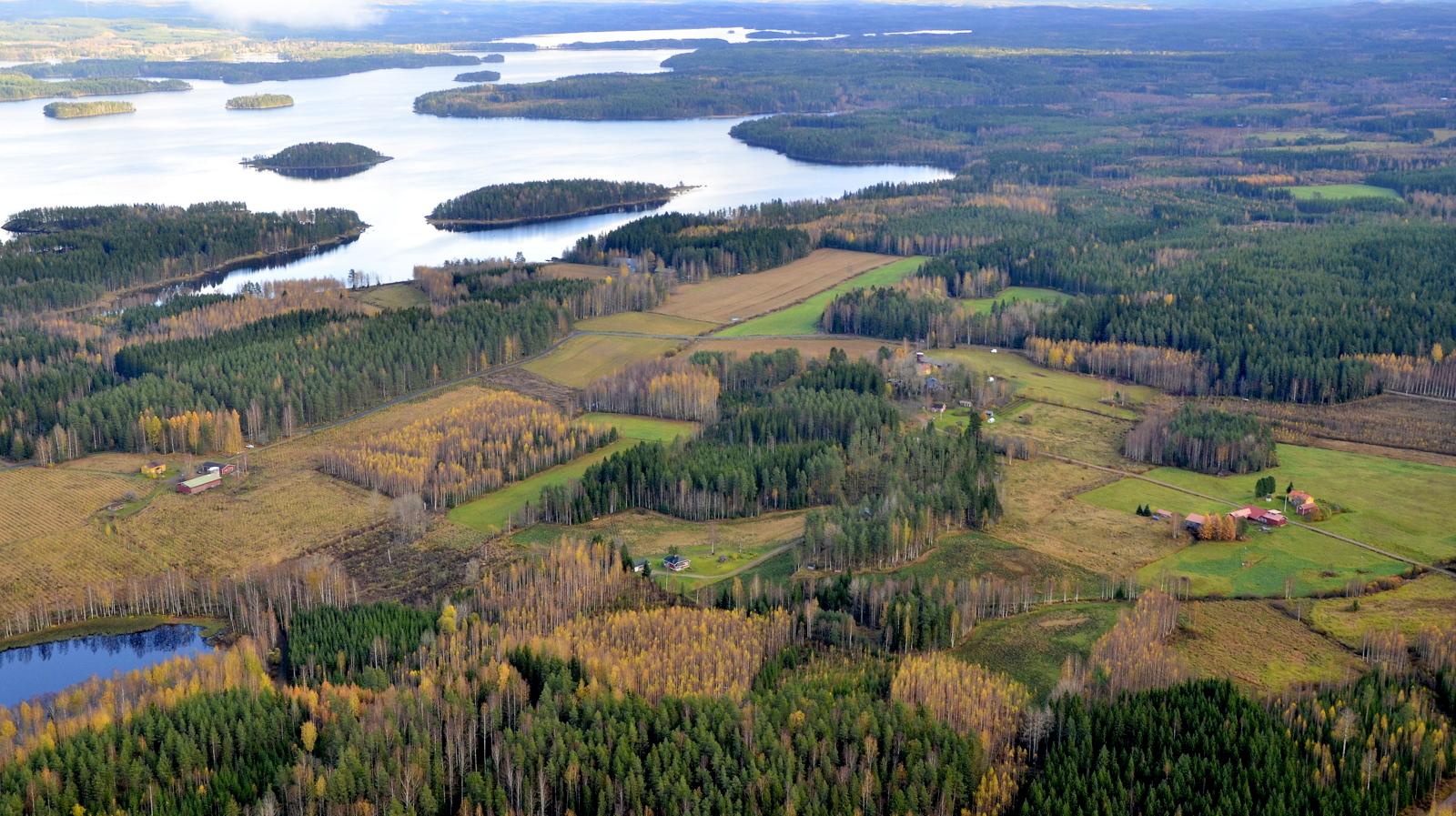Lohilahden peltomaisemaa. Kuvan takalaidalla Sumiaisjärvi Kuokanjoen sillan takana.