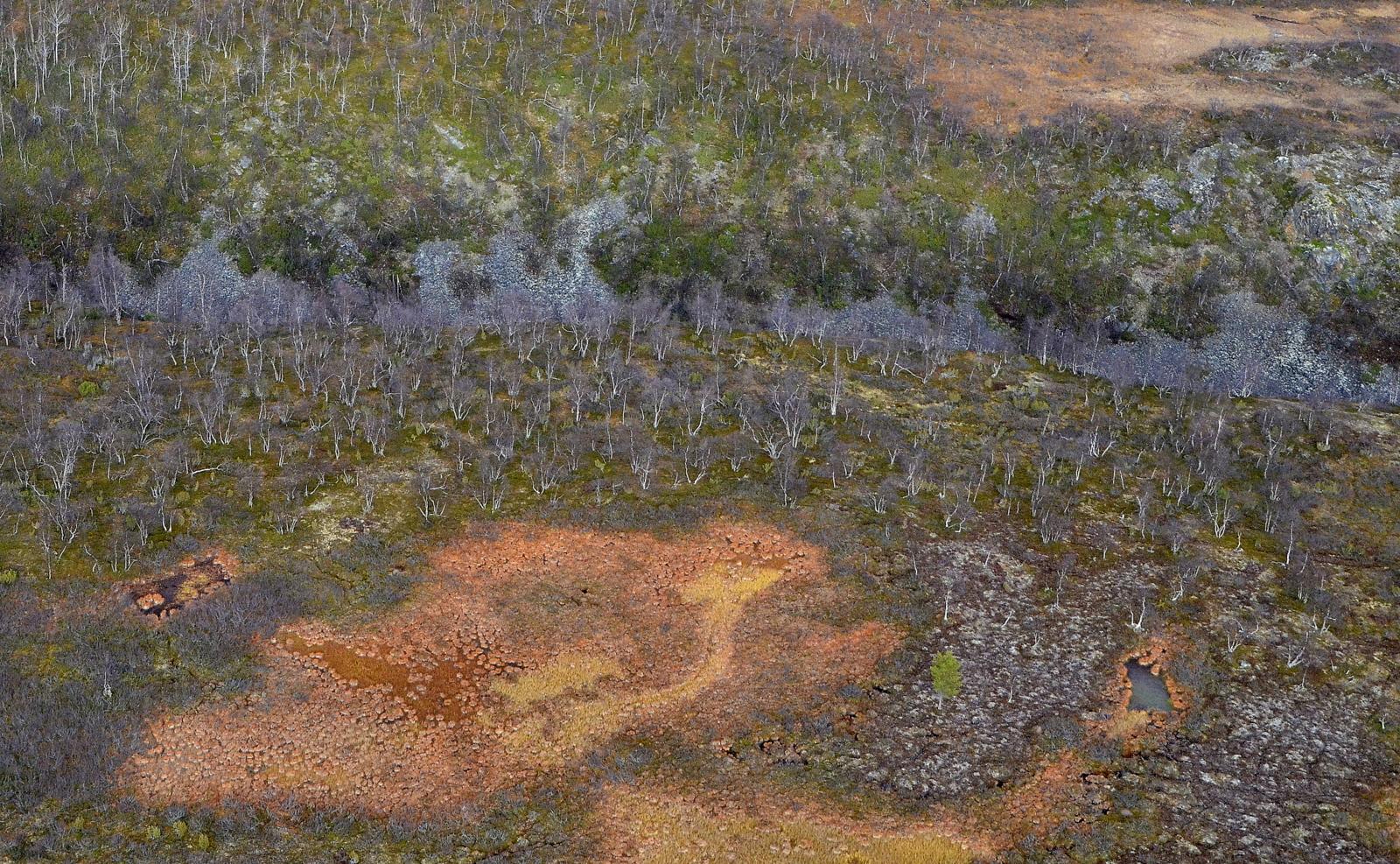 Maastossa vielä väriä, vaikkakin varsinainen ruska jo ohi.