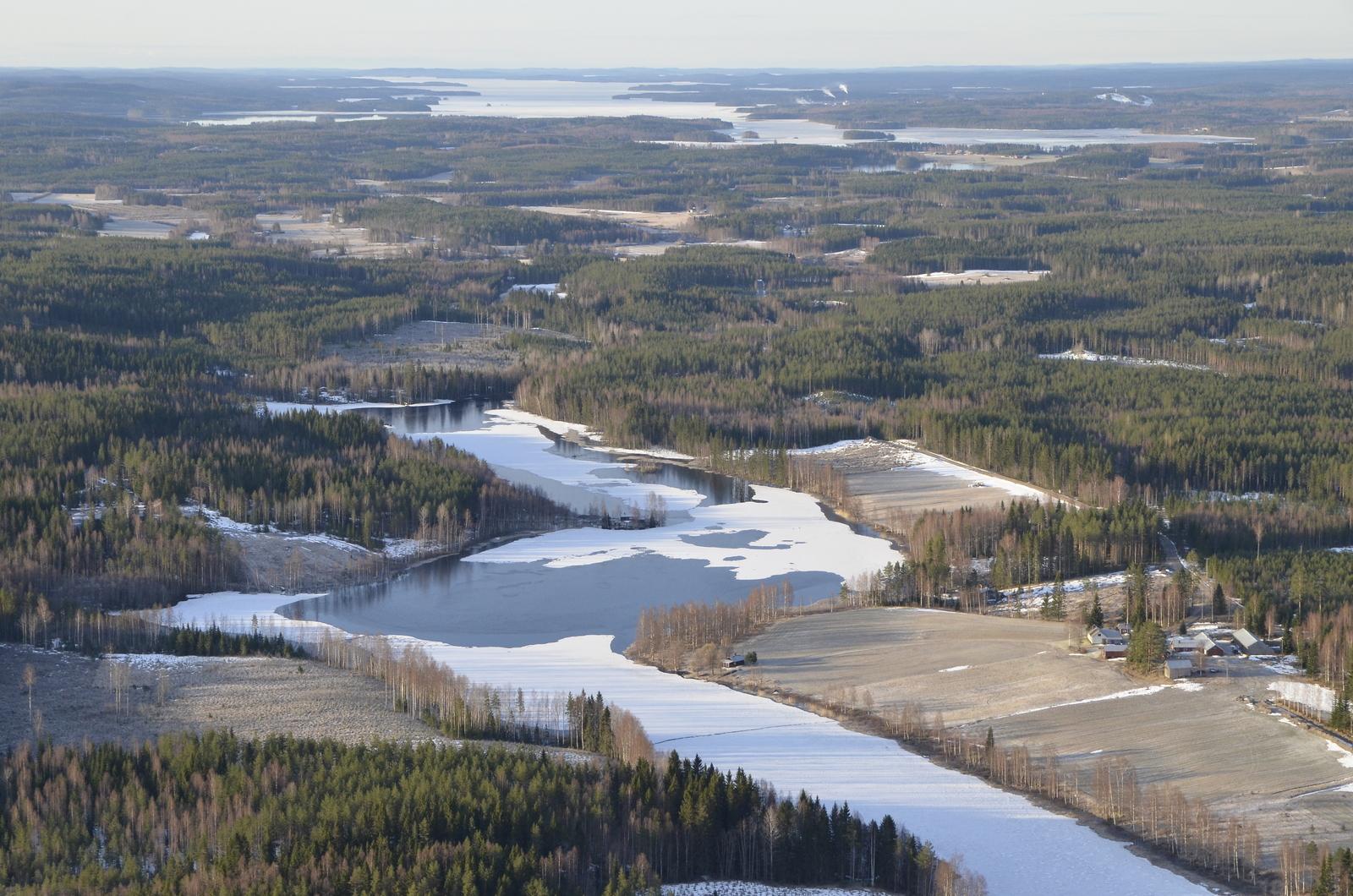Viitakankaan Saarijärvi, taustalla lähimpänä Keiteleen Muikunlahti.