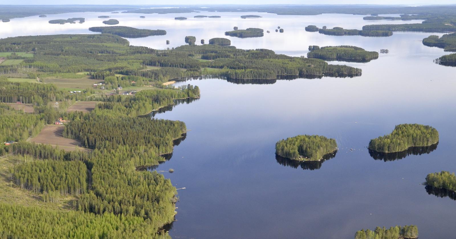 Putaanlahden kupeella vasemmalla luomalanranta. Koliman selän takana pilkottaa Järkiniemi ja Pasala, jonne lähden kiertämään tuolta vasemman rannan kautta.