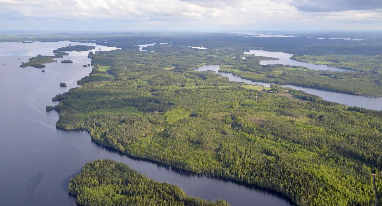 Tästä oikaisen kotipesälle Sorkanniemen yli Kuhalanlahden suuntaan.